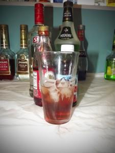 watermellon cocktail copy